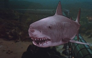 Great White Shark from Jaws III 1