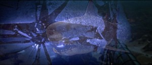 Jaws 3 11